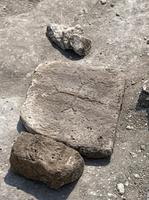 Археологи ИИМК РАН и Государственного Эрмитажа нашли под Херсонесом раннехристианский храм с византийским крестом и многочисленными захоронениями