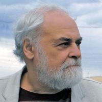 Интервью директора ИИМК РАН В.А. Лапшина об итогах и перспективах изучения  Старой Ладоги